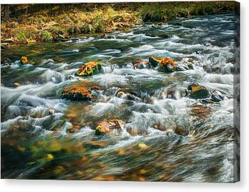 Stream Fall Colors Great Smoky Mountains Painted  Canvas Print by Rich Franco