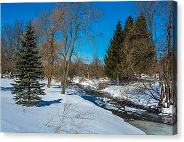Stream In Snow And Ice Canvas Print by Guy Whiteley