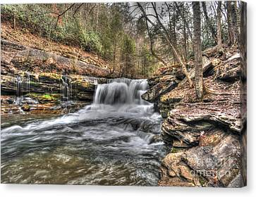 Stream Near Thurmond Wv Canvas Print by Dan Friend