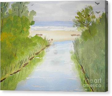 Stream Running To The Ocean Canvas Print by Pamela  Meredith