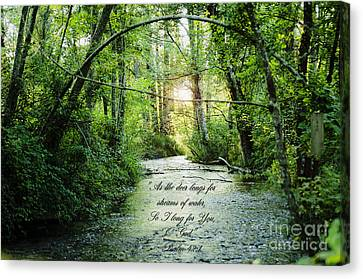 Streams Of Water Canvas Print by MaryJane Armstrong