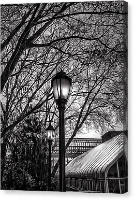 Streetlamp Brooklyn Canvas Print by H James Hoff