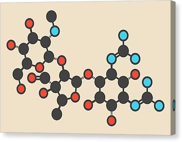 Streptomycin Antibiotic Molecule Canvas Print by Molekuul