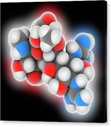 Streptomycin Drug Molecule Canvas Print by Laguna Design