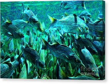 Striped Bass - Painterly V1 Canvas Print by Wingsdomain Art and Photography