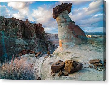 Stud Horse Point 2 Canvas Print by Larry Marshall
