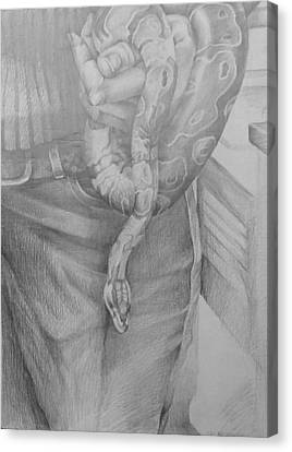 Study For Entanglement Canvas Print by Julie Orsini Shakher