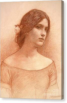 Study For The Lady Clare Canvas Print by John William Waterhouse
