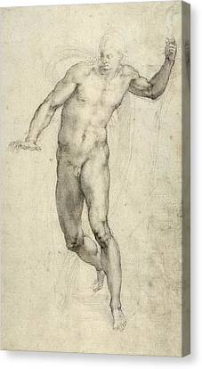 Study For The Last Judgement  Canvas Print by Michelangelo  Buonarroti