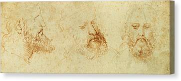 Study Of A Male Head Canvas Print by Leonardo Da Vinci