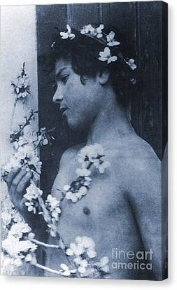Study Of A Young Boy With Flowers In His Hair Canvas Print by Wilhelm von Gloeden