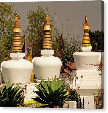 Stupas In A Buddhist Monastery Canvas Print by Jaina Mishra