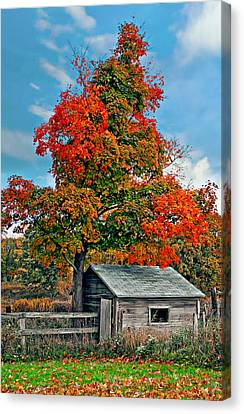 Sugar Shack Canvas Print by Steve Harrington