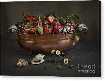 Summer Canvas Print by Elena Nosyreva