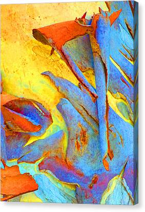 Summer Eucalypt Abstract 29 Canvas Print by Margaret Saheed