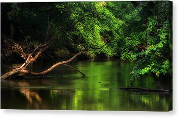 Summer Green Canvas Print by Bill Wakeley