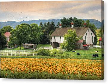 Summer In Gratz Canvas Print by Lori Deiter