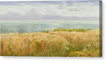 Summer On The Cliffs Canvas Print by John Brett