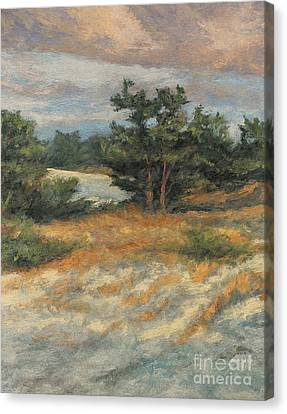 Summer Shadows - Provincetown Canvas Print by Gregory Arnett