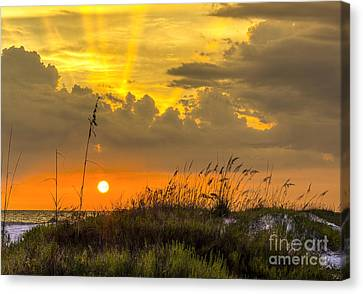 Summer Sun Canvas Print by Marvin Spates