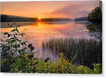 Summer Sunrise Canvas Print by Bill Wakeley