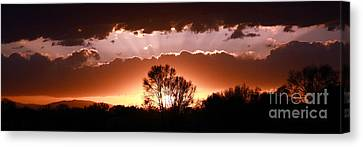 Summer Sunset Canvas Print by Steven Reed