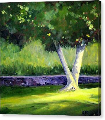 Summer Tree Canvas Print by Nancy Merkle