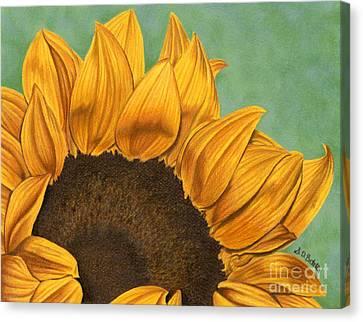Summer's End Canvas Print by Sarah Batalka
