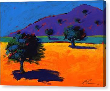 Summertime Canvas Print by Paul Powis