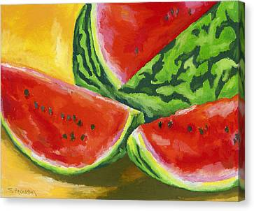 Summertime Delight Canvas Print by Stephen Anderson