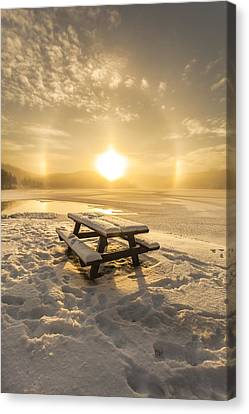 Sun Dog Canvas Print by Rose-Maries Pictures