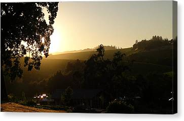 Sun Down Canvas Print by Shawn Marlow