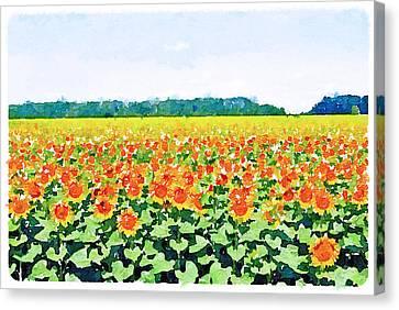 Sun Flower Landscape Canvas Print by Yury Malkov
