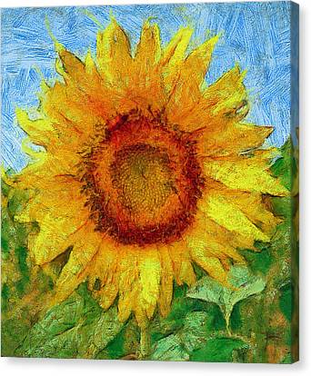 Sun Flowering 4 Canvas Print by Yury Malkov