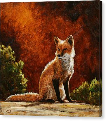 Sun Fox Canvas Print by Crista Forest