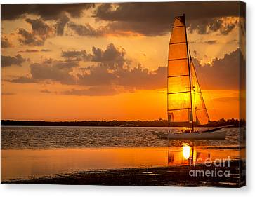 Sun Sail Canvas Print by Marvin Spates