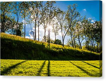 Sun Shining Through Trees And Shadows On The Grass At Antietam National Battlefield Maryland Canvas Print by Jon Bilous