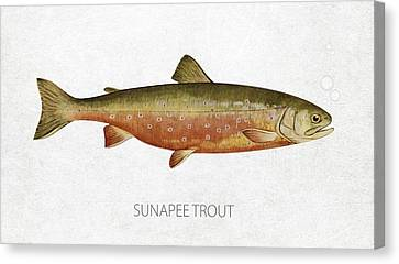 Sunapee Trout Canvas Print by Aged Pixel