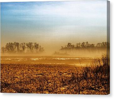 Sunday Afternoon Canvas Print by Tom Druin