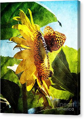 Sunflower Butterfly And Bee Canvas Print by Andee Design