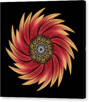 Sunflower Moulin Rouge Ix Flower Mandala Canvas Print by David J Bookbinder