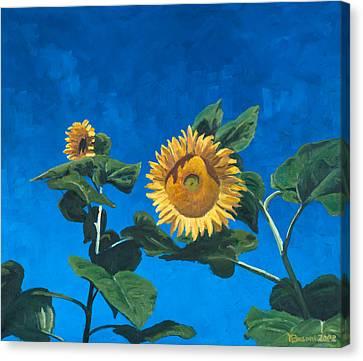 Sunflowers Canvas Print by Marco Busoni
