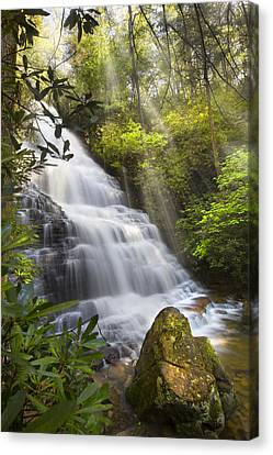 Sunlight On The Falls Canvas Print by Debra and Dave Vanderlaan
