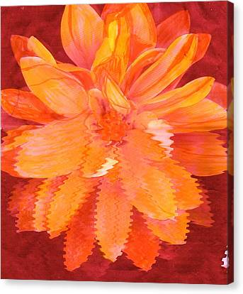 Sunny Burst Of Color Floral Canvas Print by Anne-Elizabeth Whiteway