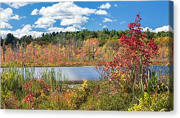 Sunny Fall Day Canvas Print by Bill Wakeley
