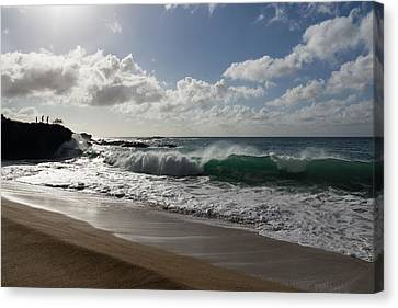 Sunny Hawaiian Beach Fun Canvas Print by Georgia Mizuleva