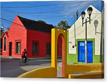 Sunny Side Canvas Print by Skip Hunt
