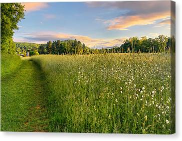 Sunny Valley Sunrise Canvas Print by Bill Wakeley