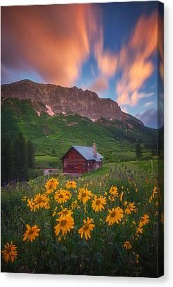 Sunrise Cabin Canvas Print by Darren  White