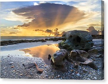 Sunrise Explosion Canvas Print by Debra and Dave Vanderlaan